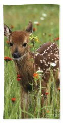 Beach Towel featuring the photograph Curious Fawn by Chris Scroggins