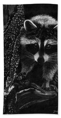 Curious Raccoon Beach Towel
