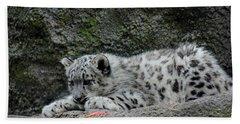 Curious Snow Leopard Cub Beach Sheet