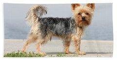 Cut Little Dog In The Sun Beach Sheet
