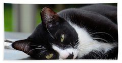 Cute Black And White Tuxedo Cat With Nipped Ear Rests  Beach Sheet