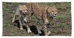 Cute Cheetah Wait For Me Mommy Beach Towel by Tom Wurl