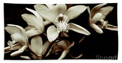 Cymbidium Orchids Beach Sheet