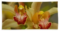 Cymbidium Twins Beach Towel