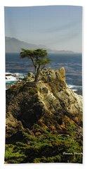 Cypress Beach Sheet by Donna Blackhall
