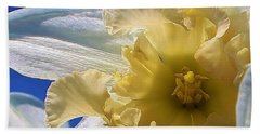Daffodil In The Sun Beach Sheet by Bruce Bley