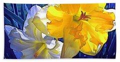 Daffodils 1 Beach Sheet by Pamela Cooper