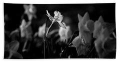 Daffodils In Black And White Beach Towel