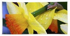 Daffodils With Rain Beach Towel by Joe Schofield
