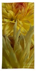 Dahlia Dew Yellow Beach Sheet by Susan Garren
