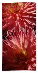 Dahlia Vi Beach Towel