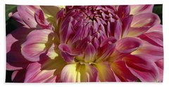 Beach Towel featuring the photograph Dahlia Vii by Christiane Hellner-OBrien