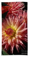 Beach Towel featuring the photograph Dahlia Viii by Christiane Hellner-OBrien