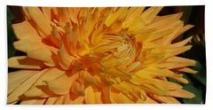 Beach Towel featuring the photograph Dahlia Xiii by Christiane Hellner-OBrien