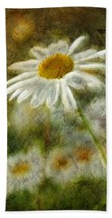 Daisies ... Again - P11at01 Beach Sheet by Variance Collections