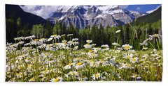 Daisies At Mount Robson Beach Towel