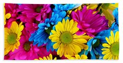 Beach Towel featuring the photograph Daisys Flowers Bloom Colorful Petals Nature by Paul Fearn