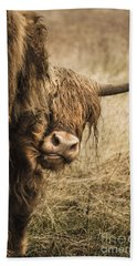 Highland Cow Damn Fleas Beach Sheet