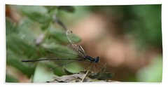 Beach Towel featuring the photograph Damselfly by Neal Eslinger