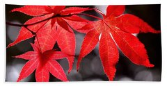 Beach Sheet featuring the photograph Dancing Japanese Maple by Rona Black