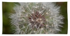 Dandelion Clock Beach Sheet