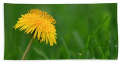 Dandelion Flower Beach Sheet