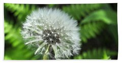 Dandelion Beach Sheet by Jim Brage