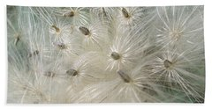 Dandelion  Beach Sheet by Rich Collins