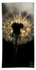 Dandelion Sunrise - 1 Beach Sheet by Kenny Glotfelty