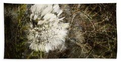 Beach Towel featuring the photograph Dandelions Don't Care About The Time by Belinda Greb
