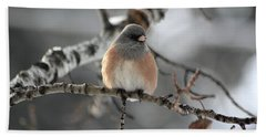 Dark-eyed Junco Beach Sheet