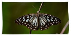 Dark Glassy Tiger Butterfly On Branch Beach Sheet