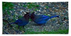 Darling I Have To Tell You A Secret-sweet Stellar Jay Couple Beach Sheet