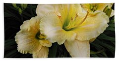 Day Lilies A Short Life Beach Towel