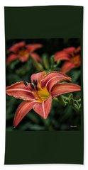 Day Lilies Beach Sheet