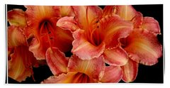 Beach Towel featuring the photograph Daylilies 1 by Rose Santuci-Sofranko