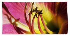 Daylilly Dusted With Pollen Beach Sheet by Jennifer Muller