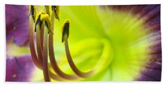 Daylily Macro 2 Beach Towel