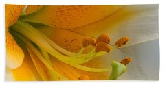 Beach Towel featuring the photograph Gold Daylily Close-up by Patti Deters