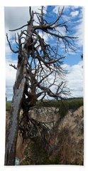 Dead Tree Beach Towel