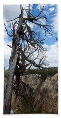 Dead Tree Beach Towel