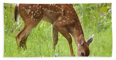 Beach Towel featuring the photograph Little Fawn Blue Wildflowers by Nava Thompson