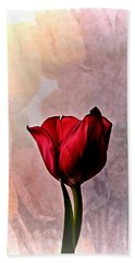 Deep Red Tulip On Pale Tulip Background Beach Sheet