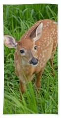 Deer 42 Beach Towel