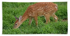 Deer 46 Beach Sheet