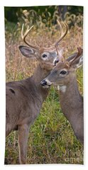 Deer 48 Beach Towel