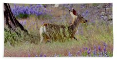 Deer In The Meadow Beach Sheet by Debby Pueschel