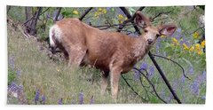 Beach Towel featuring the photograph Deer In Wildflowers by Athena Mckinzie