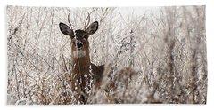 Deer In Winter Beach Towel
