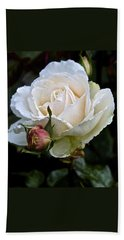 A Rose Of Delicate Beauty Beach Towel
